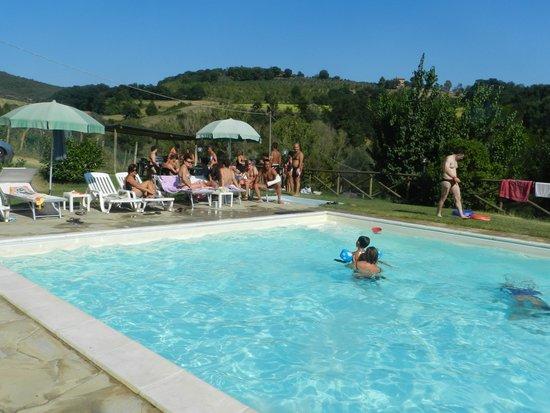 Agriturismo Fattoria di Rigone: relax in piscina