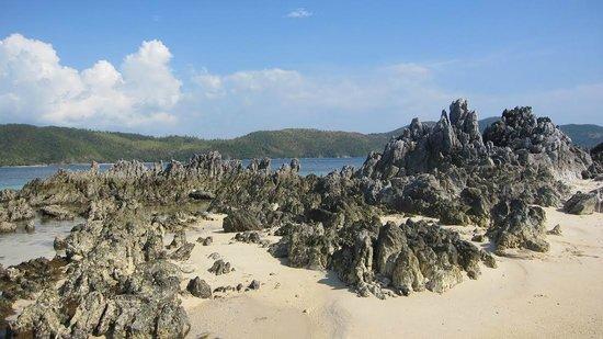 Coral Bay Beach & Dive Resort : Twin Islands