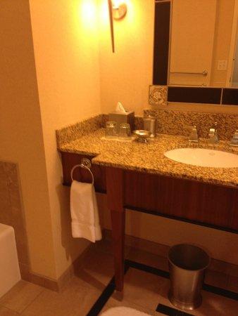 Loews New Orleans Hotel: bathroom