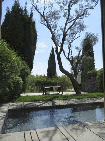 Muse Hotel : 'private' garden