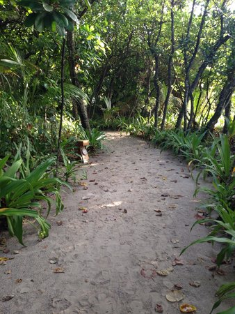 Reethi Beach Resort: to get to your room, you have to walk through these paths. in the night, it can be real dark alt