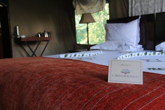 Camp Okavango: Hotel room
