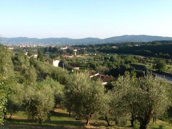 Villa Parri: view