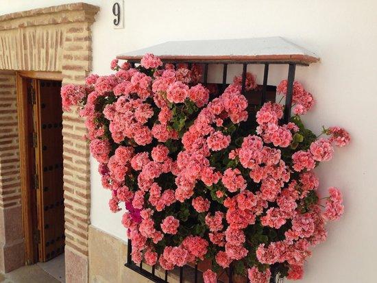 Restaurante El Escribano: Flowers