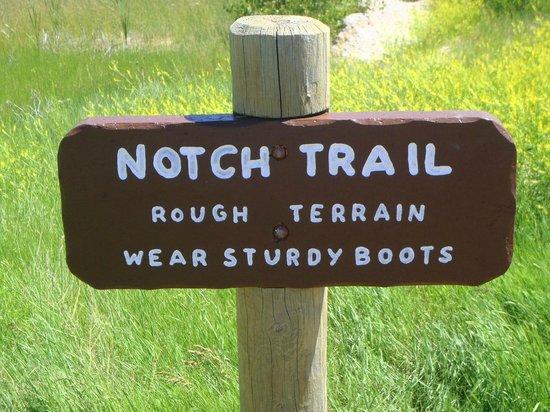 Notch Trail: SIgn