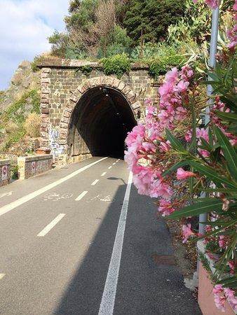 Pista Ciclabile Framura-Bonassola: Прекрасный маршрут для прогулки и пробежки в любое время года