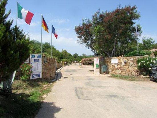 Camping Caravaning Rondinara : Campingplatz