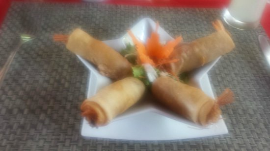 Sandalwood Luxury Villas: My wife's favourite - the prawn spring rolls.