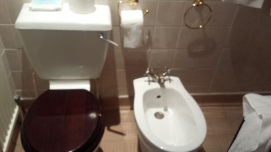 The Grant Arms Hotel: loose toilet handle