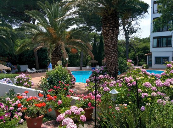 Mesón de Sancho: pool