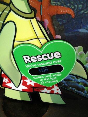 Sea Life Blackpool : Rescue