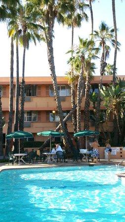 Saga Motor Hotel: La piscine