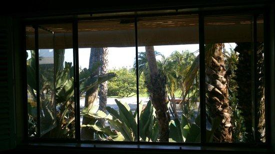 Saga Motor Hotel: Vue depuis notre chambre