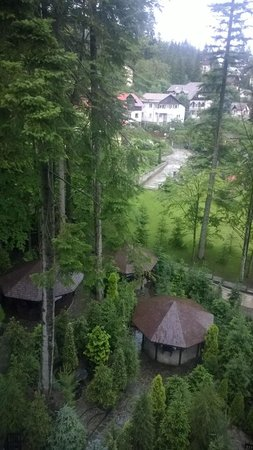 Smart Hotel : Aussicht in den Garten