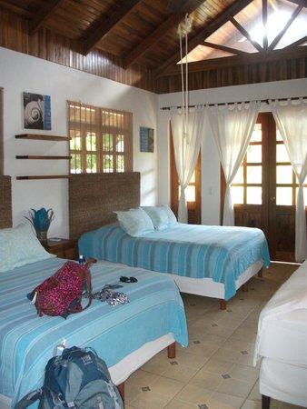 Blue Surf Sanctuary : Room