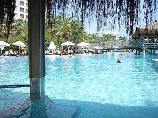 Royal Wings Hotel: Stay under cover in pool