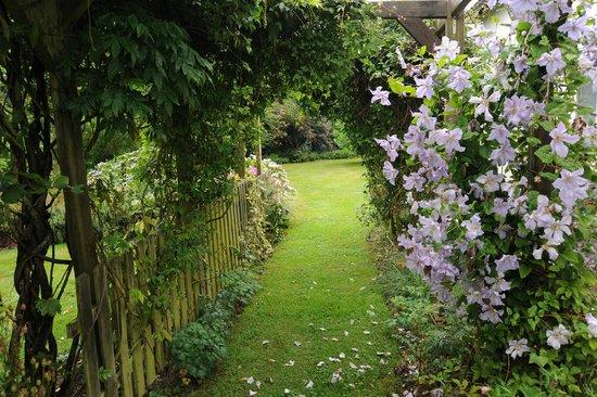 La Maison de Lavande : A relaxing garden walk before breakfast