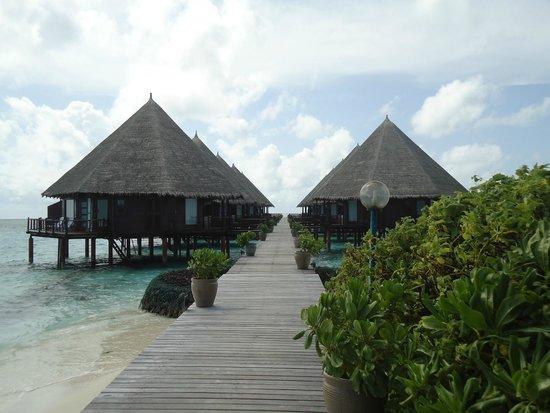 Velidhu Island Resort : Les pilotis