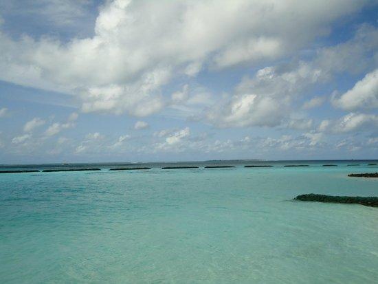 Velidhu Island Resort : La vue des chambres