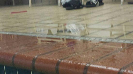 Ramada Seatac Airport: Unsafe pool
