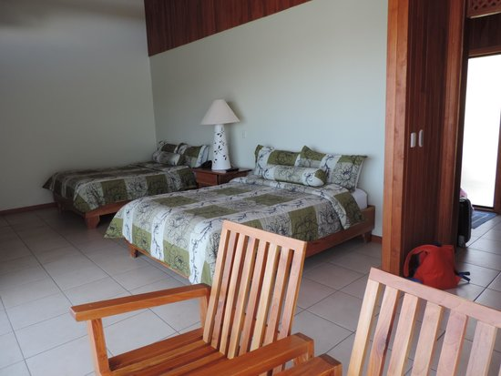 Ficus Sunset Suites Hotel : Habitacion