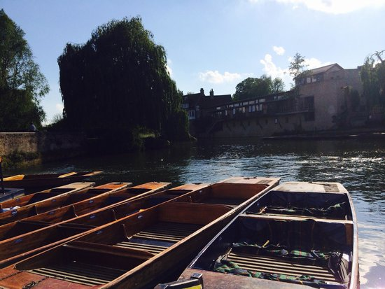 Scudamore's Punting Company: Nice day to go punting