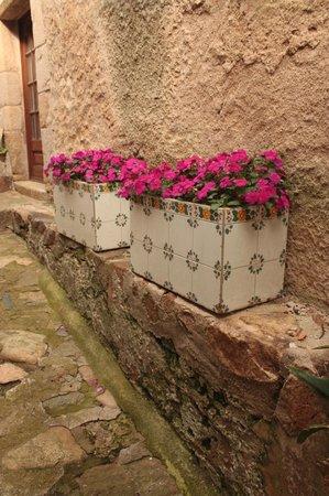 Vila Vella (Old Town): оригинальные керамические кашпо