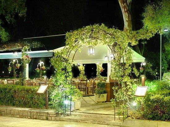 Avli: terrace outside 3