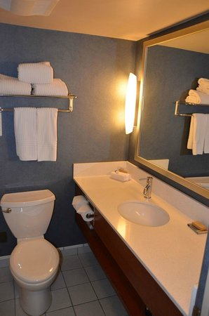 Blue Horizon Hotel: Bathroom Sink