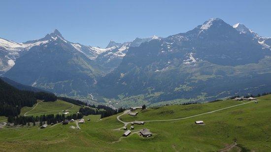 Bussalp: ブスアルプからの景色
