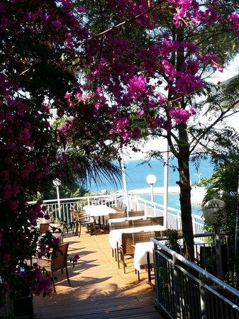 Pine Bay Holiday Resort: Restaurant