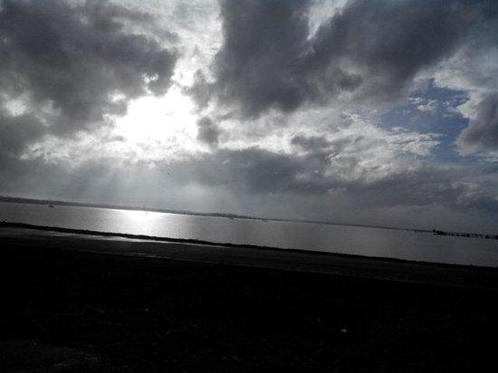 Club Mahindra Cherai Beach : Cherai view