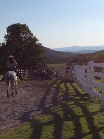 Castleton, VT: Ranch
