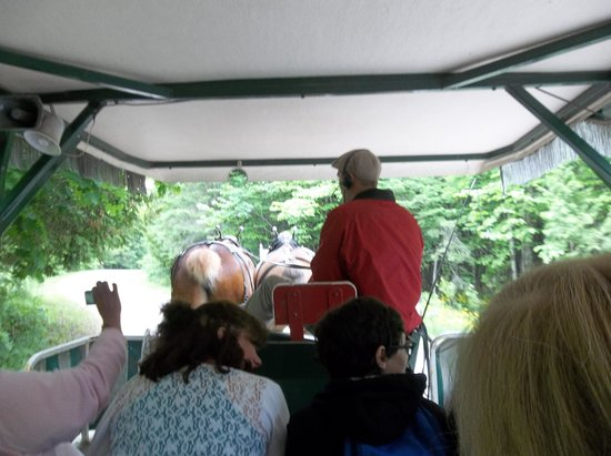 Mackinac Island Carriage Tours: Loved Taalf as our guide