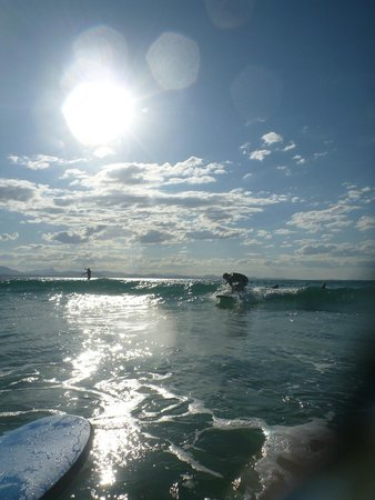 Blackdog Surfing: surfing, such a lot of fun
