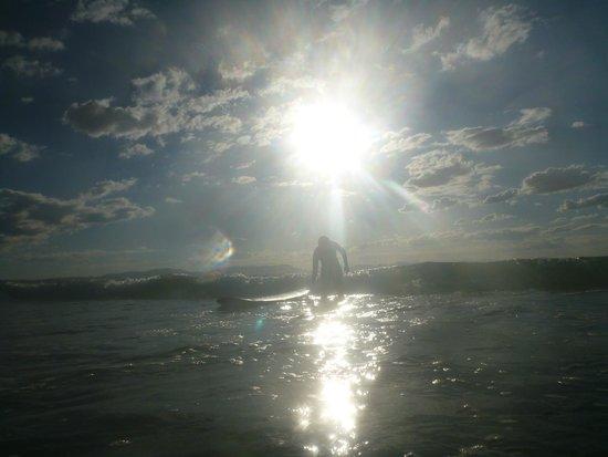 Blackdog Surfing: great location