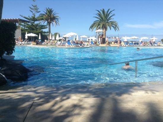 Iberostar Torviscas Playa: main pool thats massive.