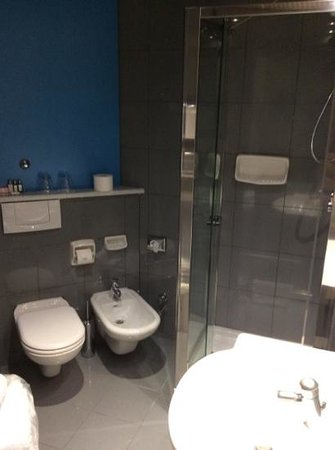 Hotel Mediolanum Milan: de badkamer met toilet