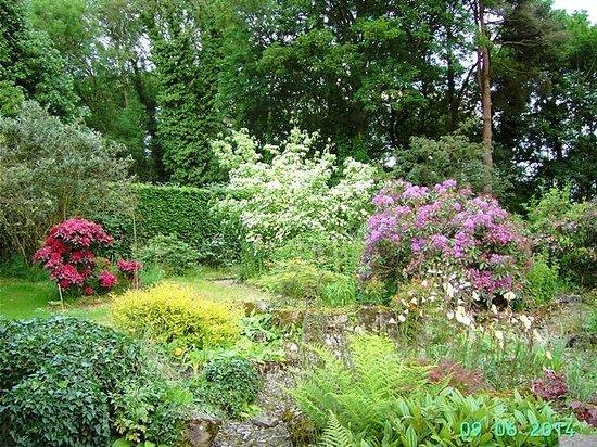 Middlemoor Barn: Part of the gardens