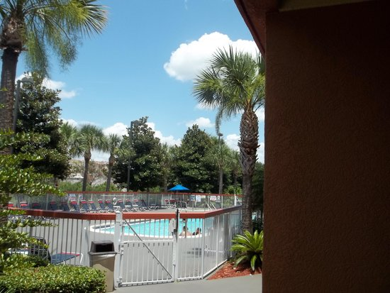 Comfort Suites Downtown: Pool