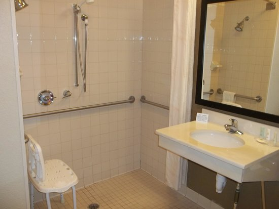 Comfort Suites Downtown: Accessible bathroom