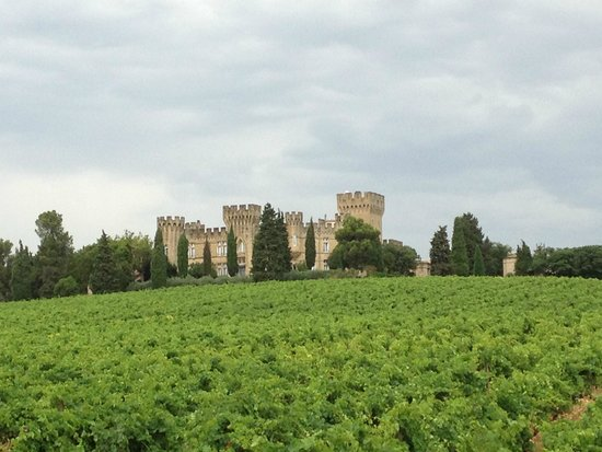 Hostellerie Chateau des Fines Roches : Hotel
