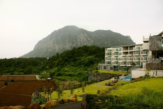 Y Resort Jeju: The mountain