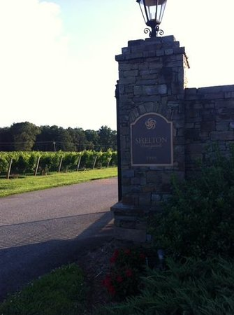 Shelton Vineyards: main entrance