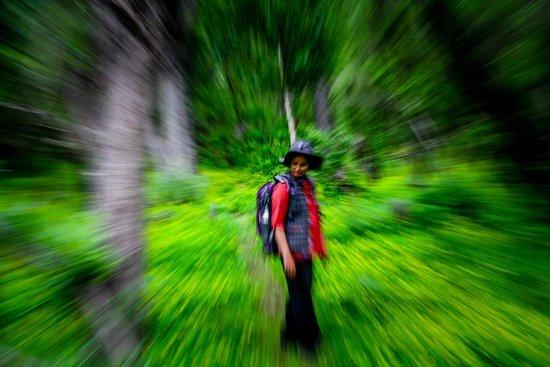 Banjara Camp &  Retreat - Sangla Valley Camp: Raksham Walks in the woods, Sangla.