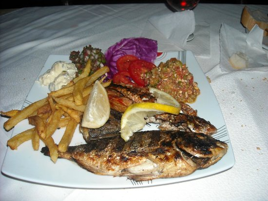 Pirates Gate Resort and Thalasso : La Symphonie de Poissons de MONDHER