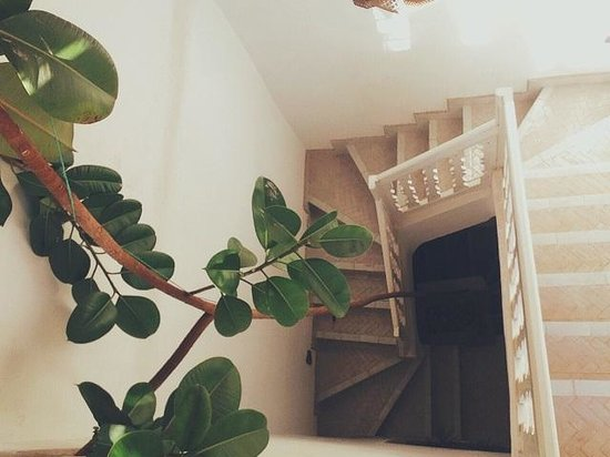 Chambres d'amis : The stairs
