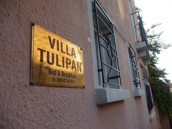Villa Tulipan : front entrance.