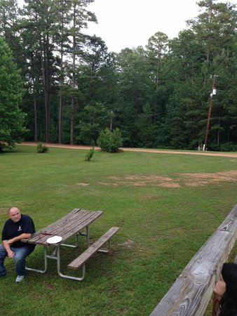 Huge Side Yard At Cottage With Picnic Table And Grill Picture - Huge picnic table
