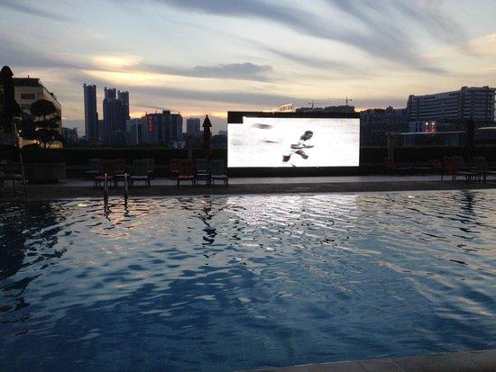 China Hotel, A Marriott Hotel, Guangzhou : Swimming pool